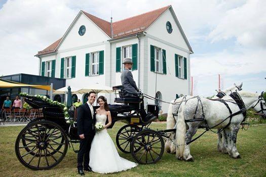 Hochzeitsfeier mit Kutsche